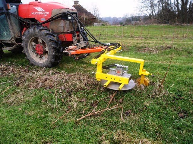 Other Blackcurrant / Fruit Bush trimmer & pruning cutter